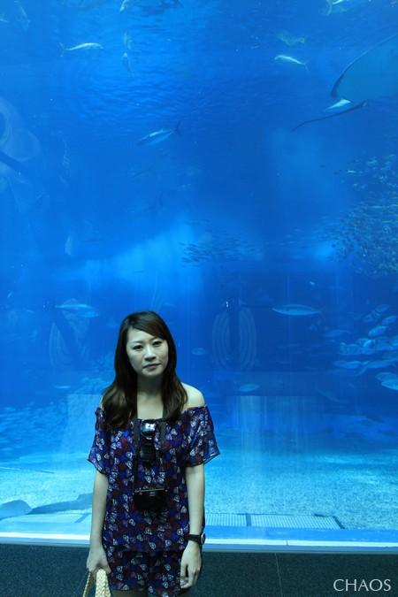 麗星郵輪-沖繩(海洋博公園) (23).jpg