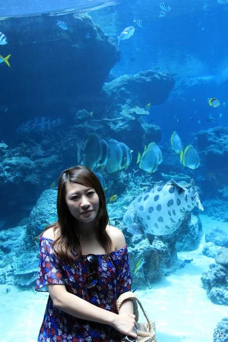 麗星郵輪-沖繩(海洋博公園) (11).jpg