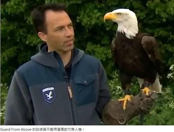 老鷹抓「小機」1
