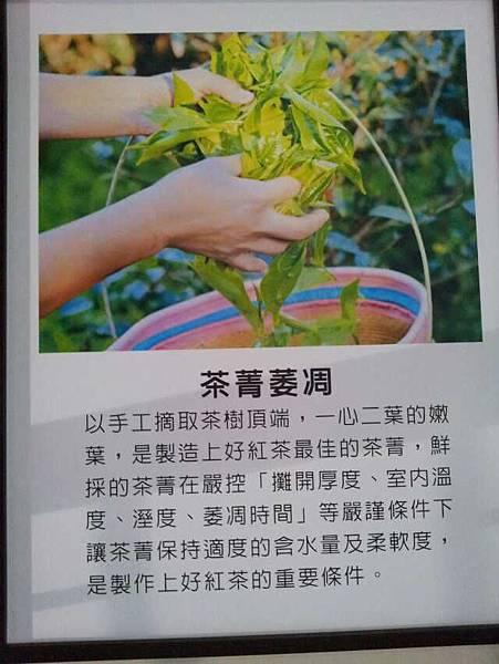 日月潭廖鄉長紅茶博物館-4