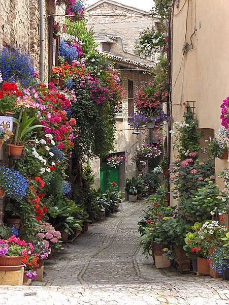 beautiful-streets-trellis-canopies-11__700