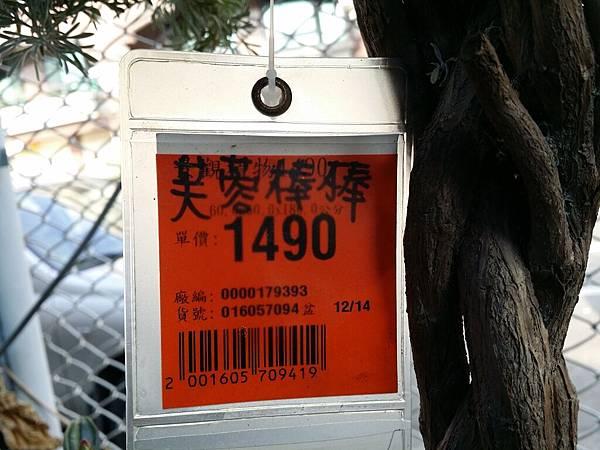 20151221_145319