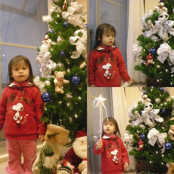 漂亮聖誕樹.jpg