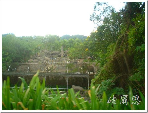 2010竹塘國中畢業旅行 029