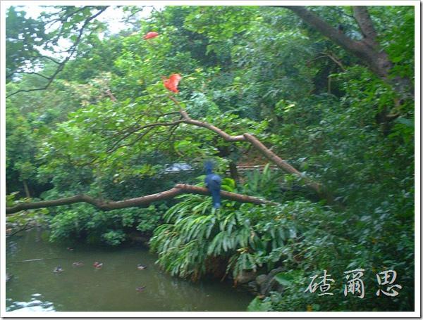 2010竹塘國中畢業旅行 036