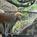 2014動物園1.jpg