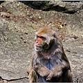 2014動物園9.jpg