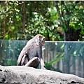 2014動物園10.jpg