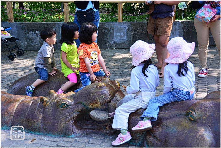 動物園的反思1.jpg