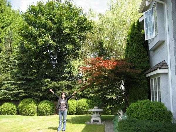 大大大大大樹
