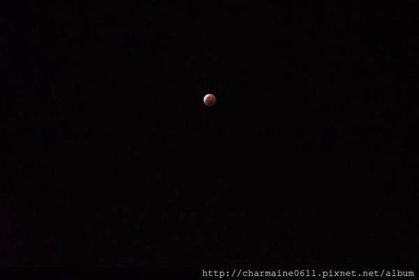 夜空-月全蝕.jpg