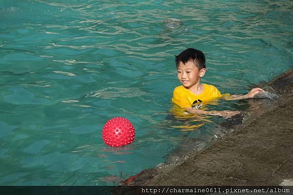游泳池戲水-翔寶怕水.JPG