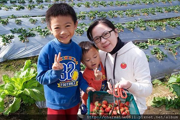 24草莓園.jpg