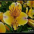 nEO_IMG_DSC01570.jpg