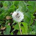 nEO_IMG_DSC01583.jpg