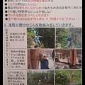 nEO_IMG_20160704_084040.jpg
