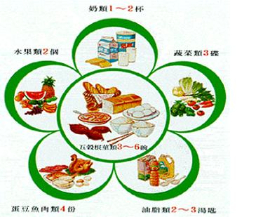 飲食指南梅花圖4