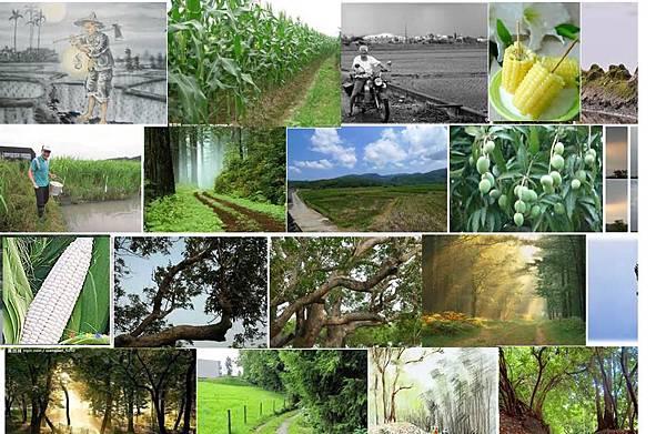 五代農家子