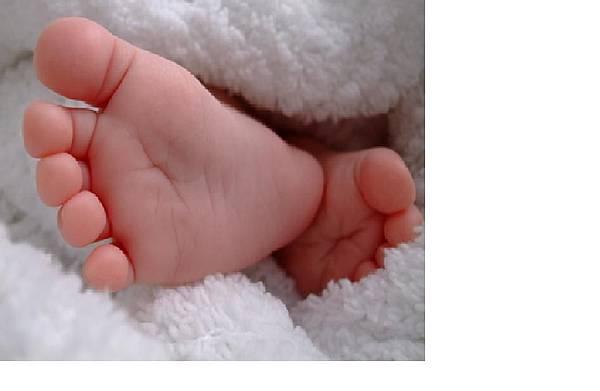 真正的baby foot