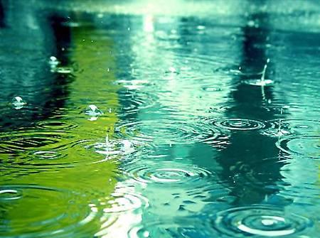 雨中即景.jpg