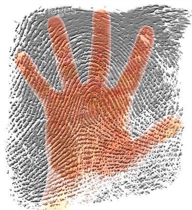 指纹.jpg