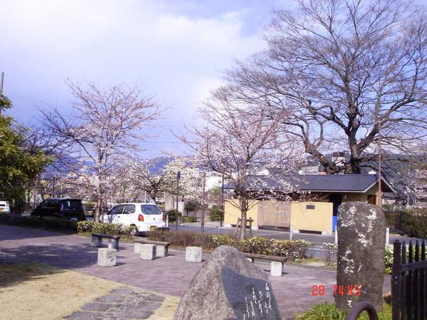 京都 鴨川畔