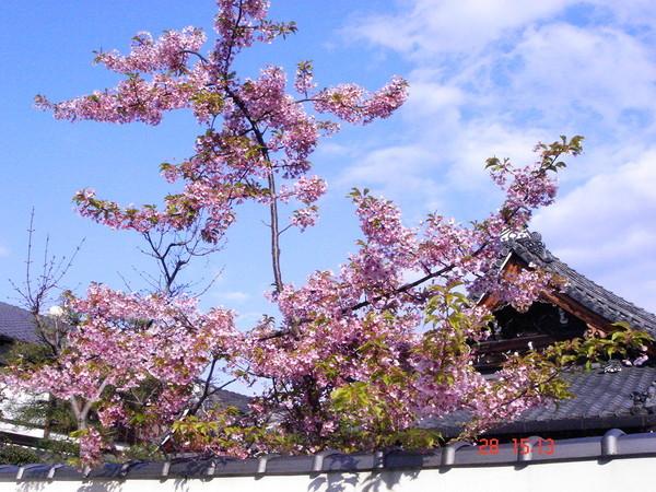 京都 五条附近