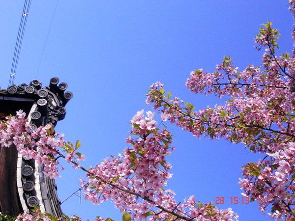 京都 五条附近 2.