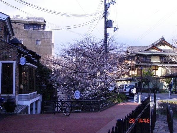 京都 木屋町和五条口