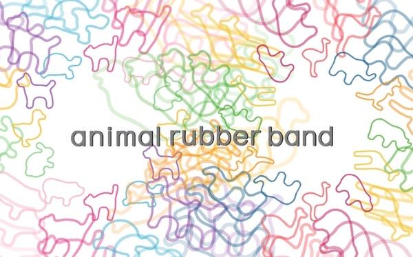 動物橡皮筋.jpg