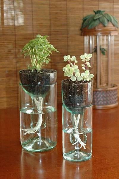 bottle-planter.jpg