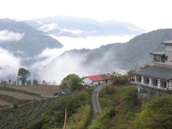 美麗山景6.jpg