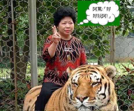 騎虎1.JPG