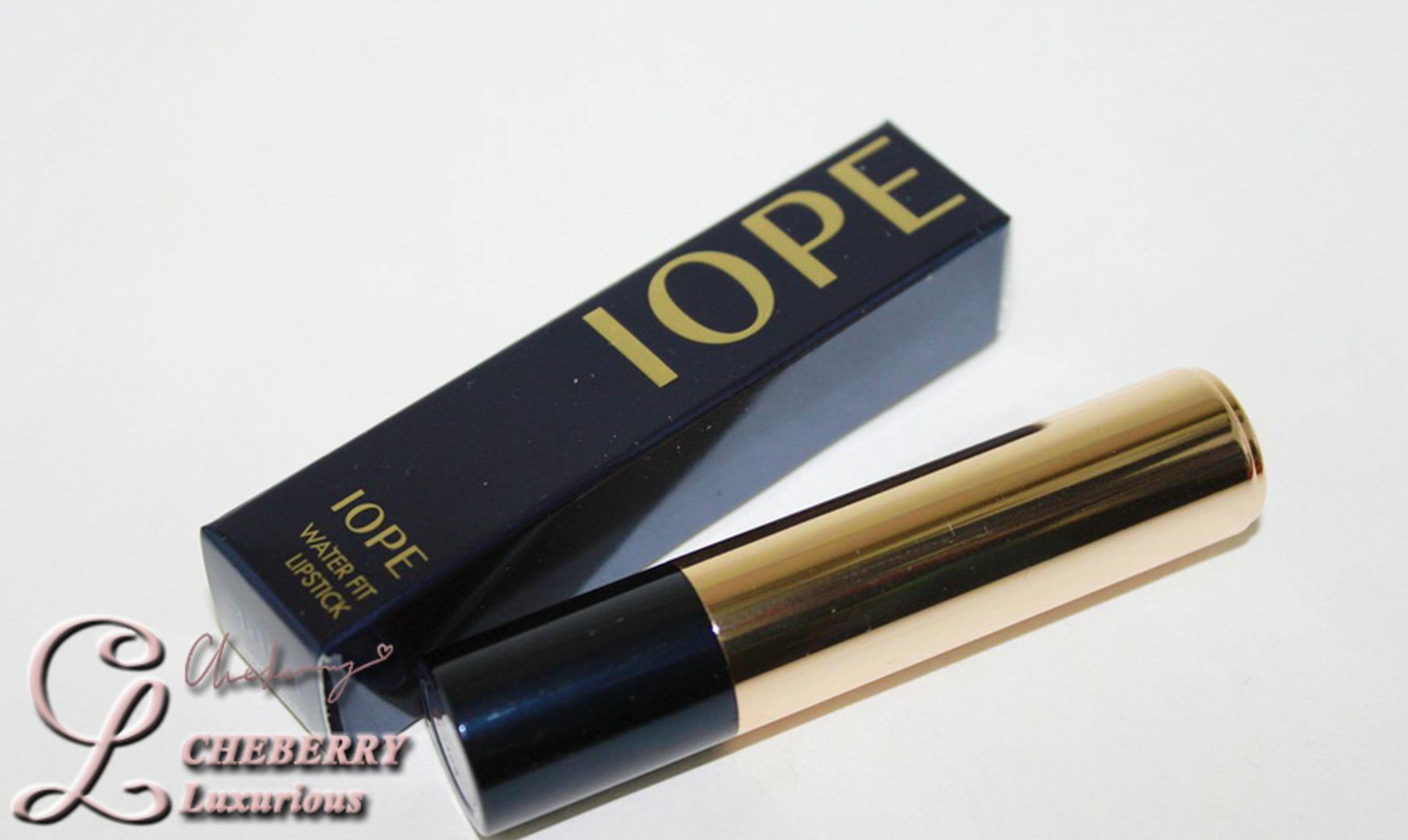 IOPE4.JPG