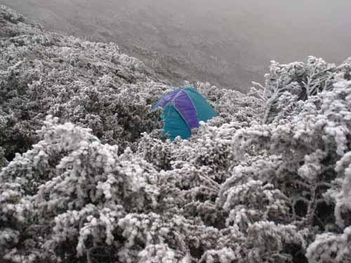 昨天有人睡在帳篷(零下十度)