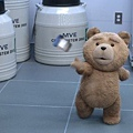 Ted 204.jpg