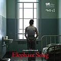 elephant_song_xlg.jpg
