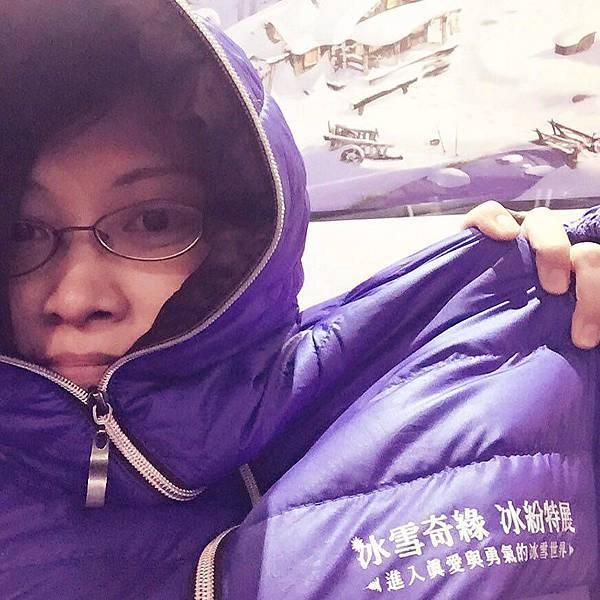 冰雪奇緣 冰紛特展 Taipei20151225 01.jpg