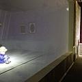 冰雪奇緣 冰紛特展 Taipei20151225 42.jpg