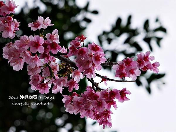 沖繩走春_DAY1 (26).JPG