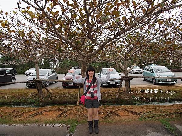 沖繩走春_DAY2 (20).JPG