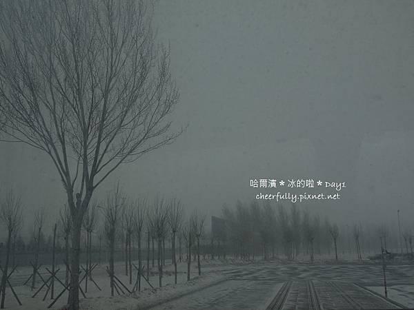哈爾濱Day1 (01).JPG
