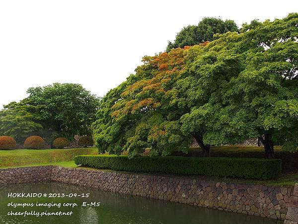 北海道DAY1 (09).JPG