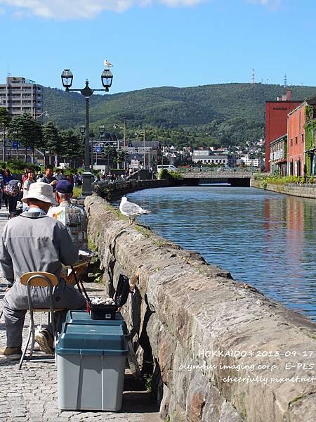 北海道DAY3 (37).JPG