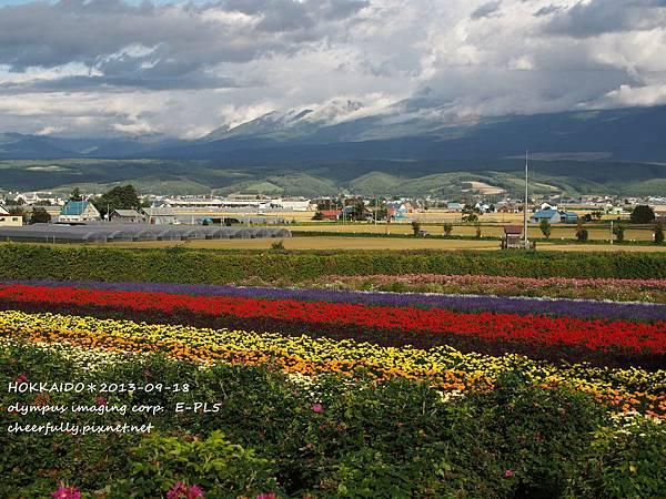 北海道DAY4 (54).JPG
