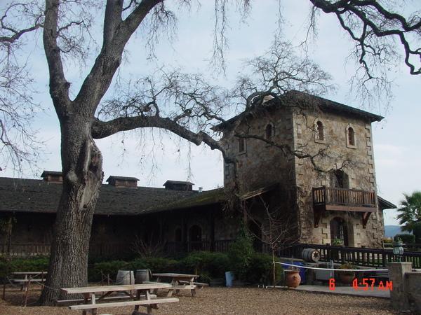 加州有名的酒鄉 Napa Valley的一家葡萄酒莊