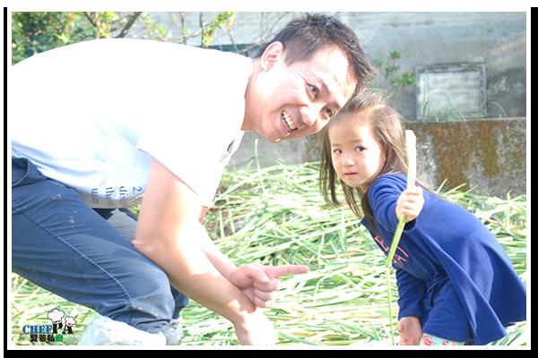 雙爸私廚 三芝筊白筍  (28)