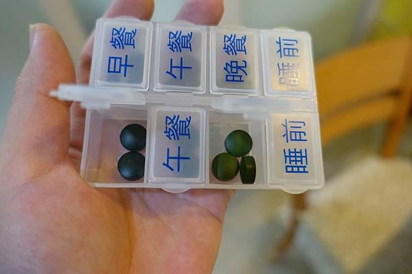 藍綠藻.JPG