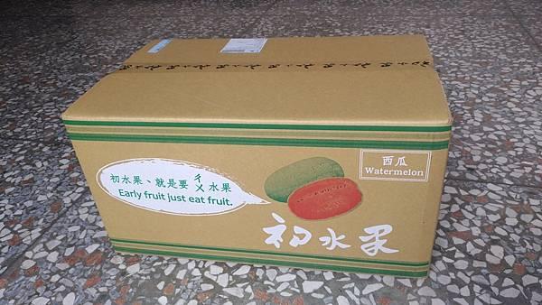 初水果10-1.jpg