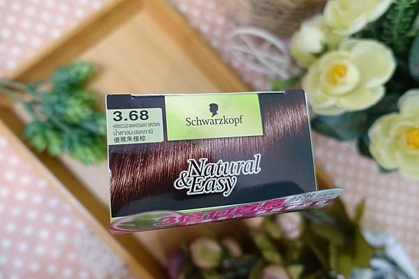 染髮劑2.JPG